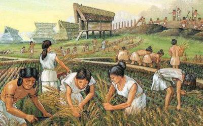 Rivoluzioni preistoriche